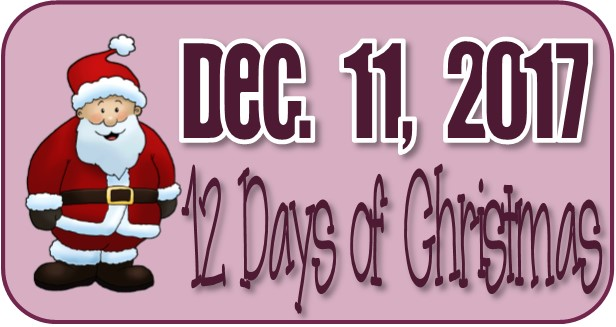 12 Days of Christmas Family Activity December 2017