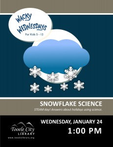 Wacky Wednesday: Snow Science @ Tooele City Library | Tooele | Utah | United States