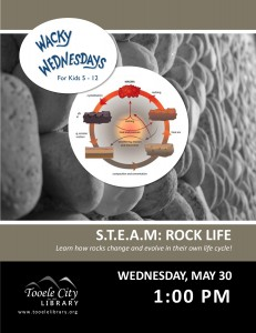 Wacky Wednesday: Rock Life @ Tooele City Library | Tooele | Utah | United States