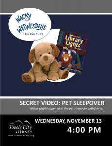Stuffed Pet Sleepover Video (Wacky Wednesday) @ Tooele City Library | Tooele | Utah | United States