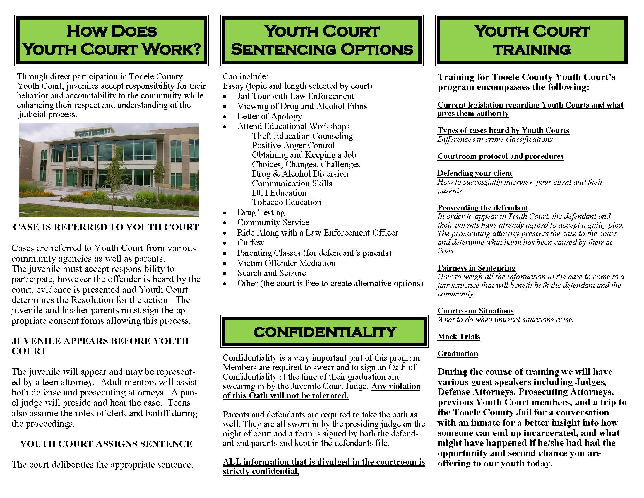 Youth Court Brochure 2018_Page_2