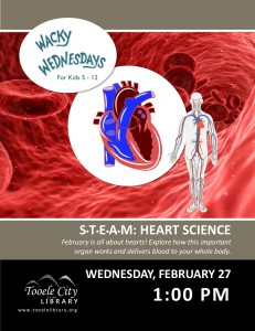 STEAM: Heart Science (Wacky Wednesday) @ Tooele City Library | Tooele | Utah | United States
