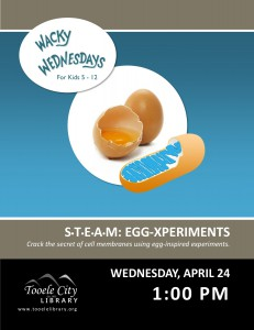 STEAM: Egg-xperiments (Wacky Wednesday) @ Tooele City Library | Tooele | Utah | United States