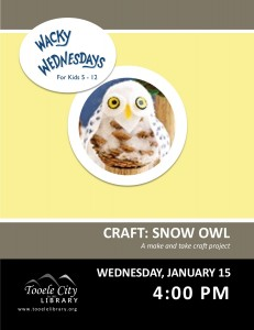 Craft: Snow Owl (Wacky Wednesday) @ Tooele City Library | Tooele | Utah | United States